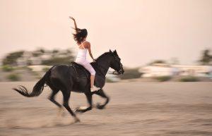 Angst beim reiten behandeln mit hypnose hamburg
